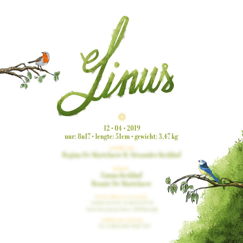 Geboorte illustratie Linus